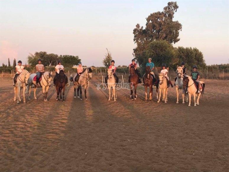 Sobre los caballos al atardecer