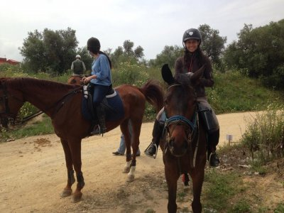 Horse Riding Route Through Utrera for 3 Hours