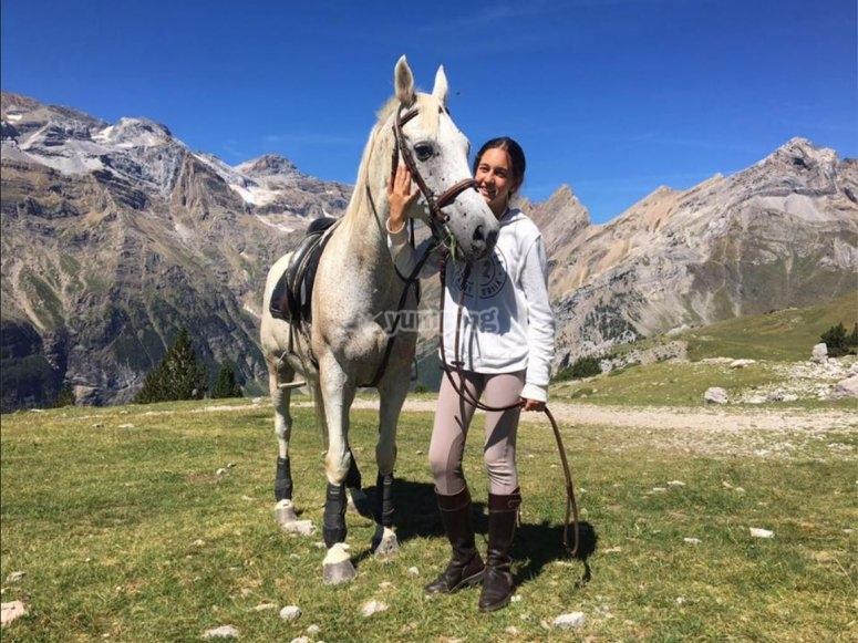 Mimando al caballo en el campo