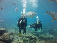Buceo en Lanzarote