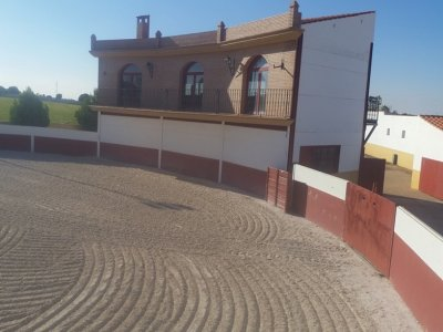 Capea en Villarrobledo gymkana y ruta de tapas