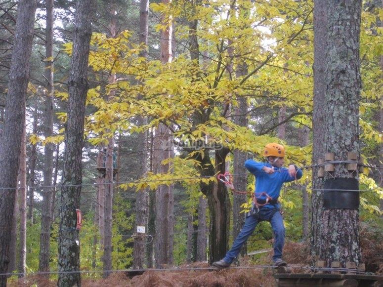Ponte nel circuito tra alberi Salamanca