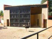 Instalaciones de avestruces