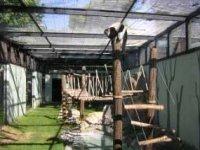 Nuevas instalaciones de primates