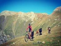 Entre el ganado con la mountain bike eléctrica