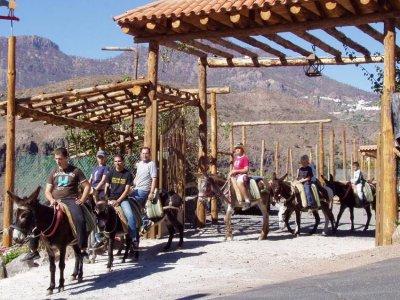 Granja Escuela Burro Safari Las Tirajanas