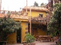 casa amarilla rodeada de hiedras