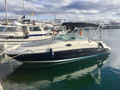 Alquiler de barco Sea Ray día completo en Benidorm