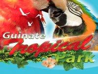 Guinate Park