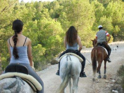 山地车在Cofrentes徒步旅行和骑马