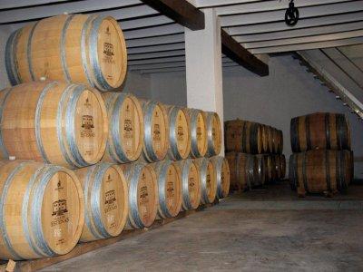 在Cofrentes的葡萄酒旅游和马背上的路线