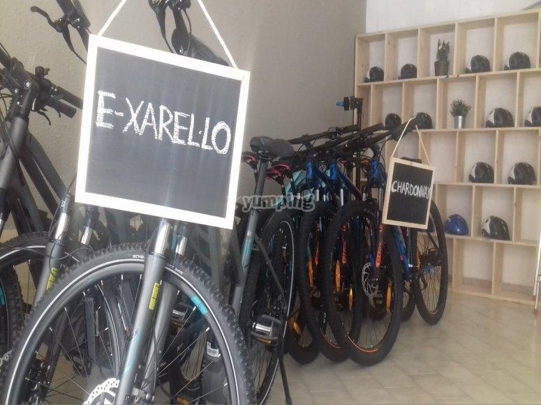 选择自行车