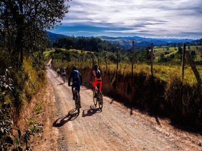 Ruta en bicicleta entre viñedos en el Penedés