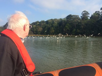 Environmental Speedboat trip in Santander Bay