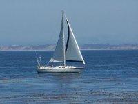 Navegando en calma