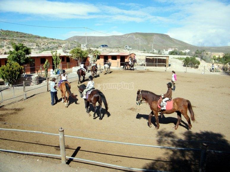 Preparando los caballos en Fuerteventura