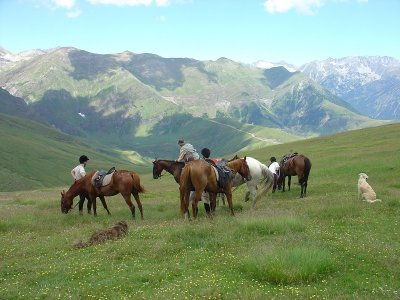 Excursion By Horse Near Cardedeu 4 Hours