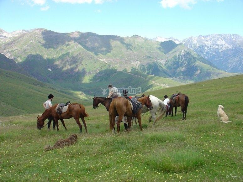 Excursion a caballo en Montseny