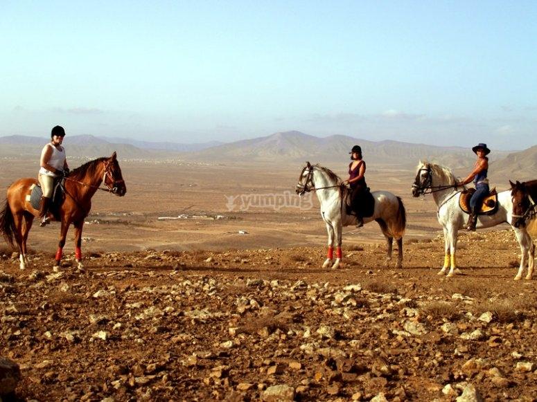 富埃特文图拉岛骑马
