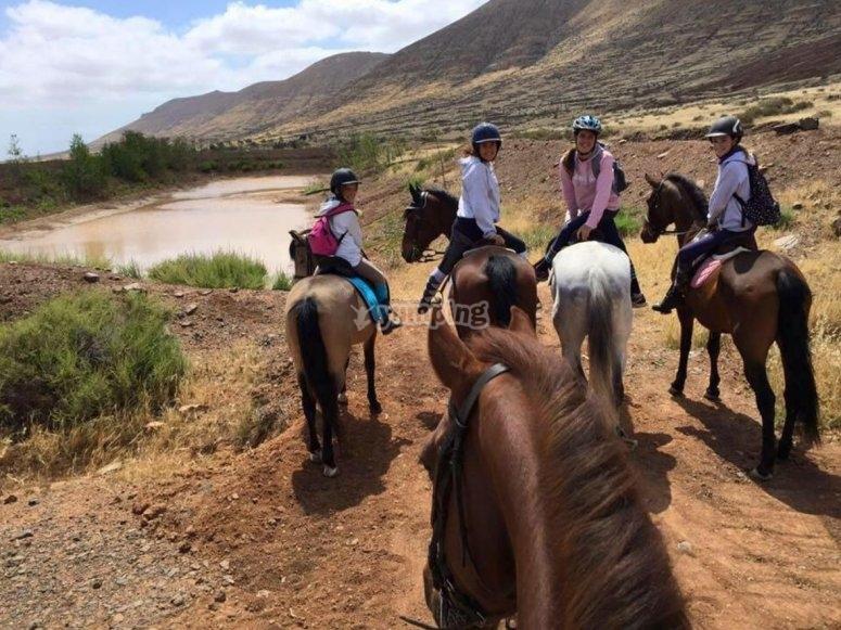 Parada en ruta ecuestre en Fuerteventura