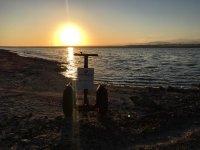 Paseo en segway en Roquetas de Mar 20 minutos