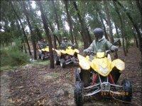 Rutas por el bosque en quad