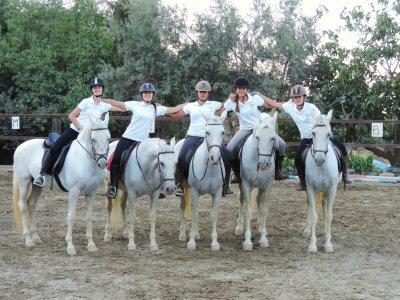 Campamento granjero hípico y aventura Las Gabias