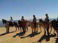 Preciosos caballos en la playa