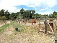 Nuestras instalaciones en Alicante