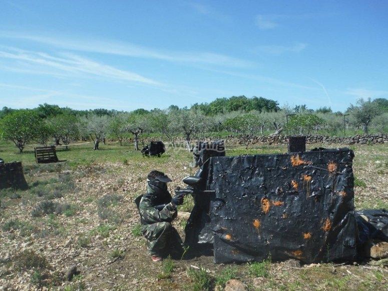 Obstaculos en el campo de paintball de La Vera