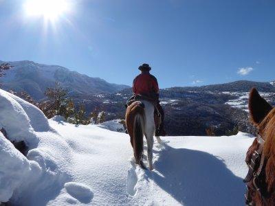 Ruta a caballo en Parque Natural del Cadí 1 día