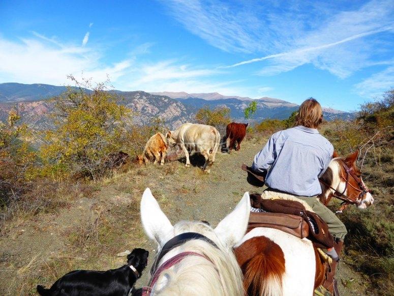 Excursion caballo
