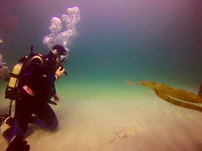 Bautismo de Buceo en mar en Costa da Morte