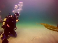 在Costa da Morte的海中潜水