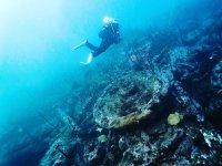 在拉科鲁尼亚的一艘沉船的潜水