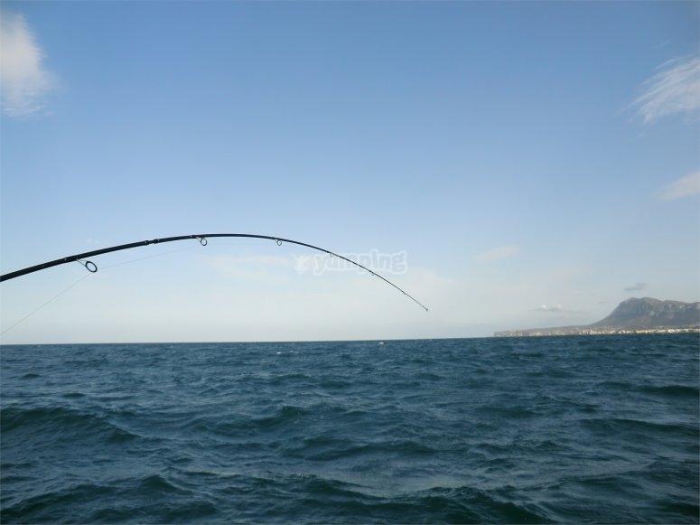 Pesca a Denia