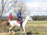 Entre la arboleda con los caballos