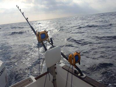 Pesca en Huelva de diferentes modalidades 4 horas