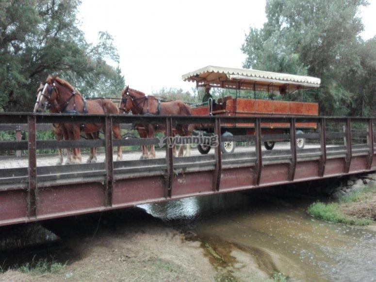 carruaje puente ajoli