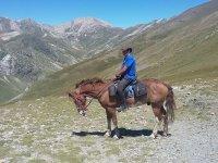 Con el caballo a los pies de las montanas