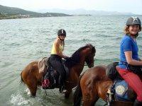 Dentro del agua con los caballos