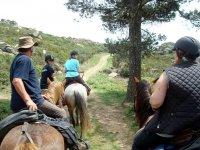 Excursion al aire libre a caballo
