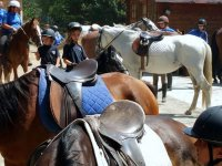 Jovenes jinetes entre caballos