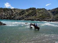 Refrescandonos con los caballos