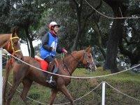 Jinete sobre el caballo