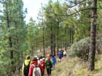 personas caminando por una ruta de senderismo