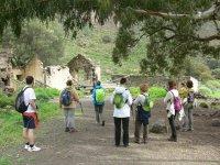 personas con sus mochilas de pie debajo de un arbol