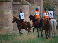Entrenando con los caballos para la competicion