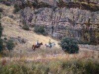 Paseo a caballo por el monte
