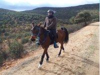 Ruta a caballo por los alrededores de los Montes de Toledo